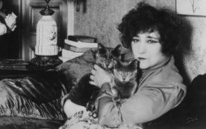 Colette : Le génie au féminin
