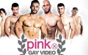 Pink Gay Vidéo Awards 2019 : Les votes sont ouverts…