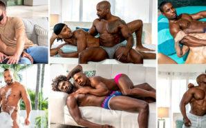 «Noir Male» : le porno gay est beau et bon…