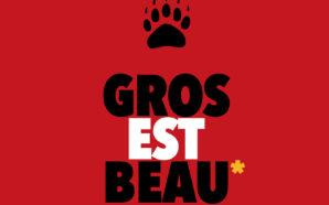 Les Ours de Paris prennent la pose dans une expo